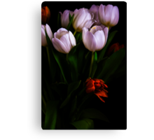 Tulips Series Canvas Print
