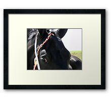 Who Is Minding The Store? Framed Print