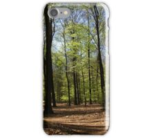 The first spring leaf iPhone Case/Skin