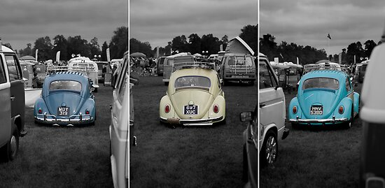 VW Beetle triptych by Martyn Franklin