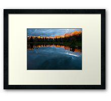 Gilded Tree Tops Framed Print