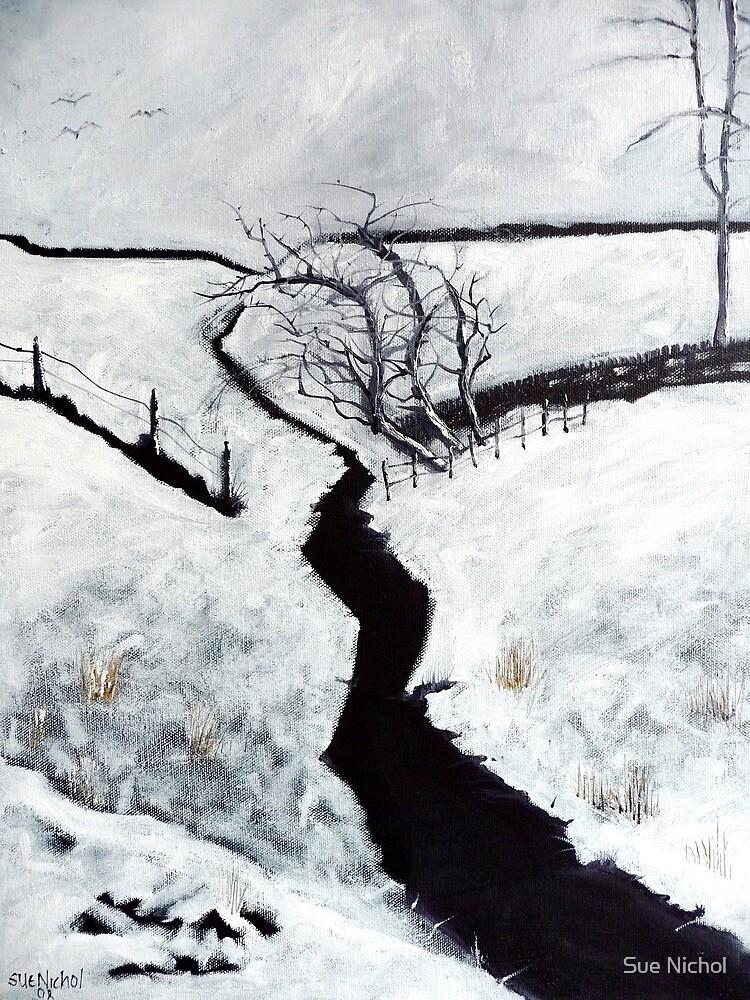 Black and White Study by Sue Nichol