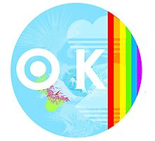 Gay Marriage is OK Photographic Print