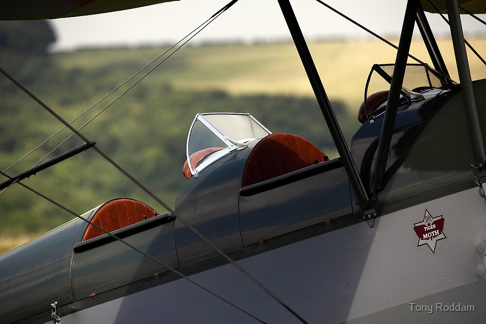 Golden age of flying - a Tiger Moth by Tony Roddam