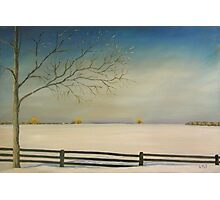 """Don't Fence Me In 30x20"""" Clarksburg, Ontario - Oil, Sold Photographic Print"""