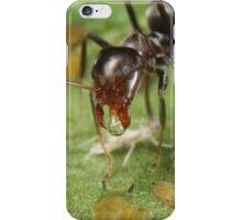 Symbiotic Relationships iPhone Case/Skin