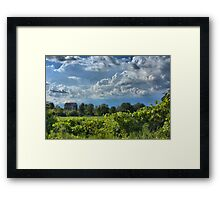 Vanishing Ontario - Loyalist barn before a summer storm Framed Print