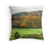 The Colours of Autumn-Finsthwaite House Throw Pillow