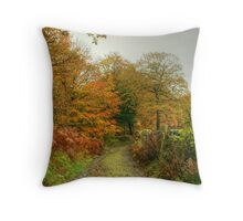 The Colours of Autumn-Finsthwaite Bridleway Throw Pillow