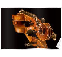 Violin Reflections Poster