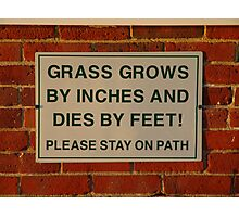 Grass grows Photographic Print