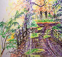 By the bridge by Fran Webster