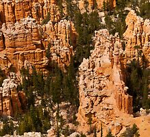 Bryce Canyon Corridors by Gregory J Summers