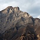 Rugger Mountain Peak in Banff by Roger Bernabo
