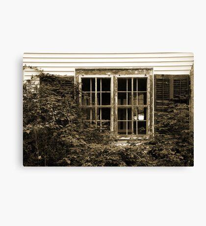 Decayed windows Canvas Print