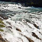 Banff Springs Rapids by Roger Bernabo