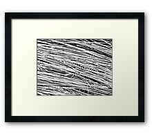 Find The Needle IV Framed Print