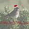 Create A Canadiana Christmas Card