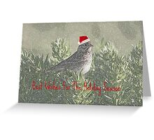 Best Wishes For the Holiday Season Greeting Card