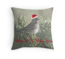 Best Wishes For the Holiday Season Throw Pillow