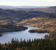 View from mountain Ringkallen - Höga Kusten / High Coast in Sweden by intensivelight