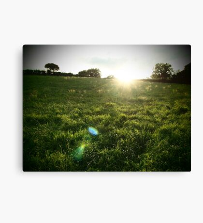 Irish fields Canvas Print