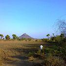 punagarh bhakri by kallaln