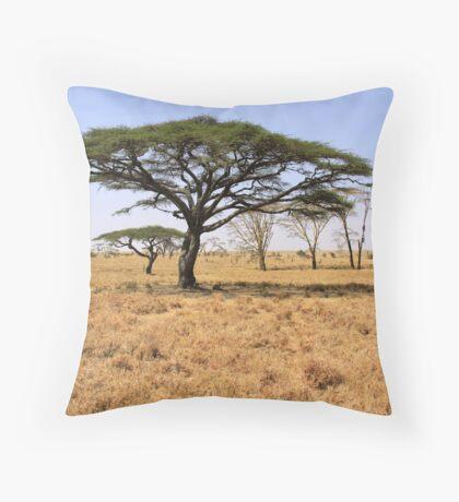 serengeti siesta Throw Pillow