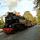 "MVP80 The ""Molli"" steam train in Bad Doberan, Germany. by David A. L. Davies"