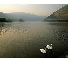 The River Rhine near Bingen, Germany, 1990s Photographic Print