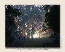 Morning Mist, Doon Doon by Odille Esmonde-Morgan