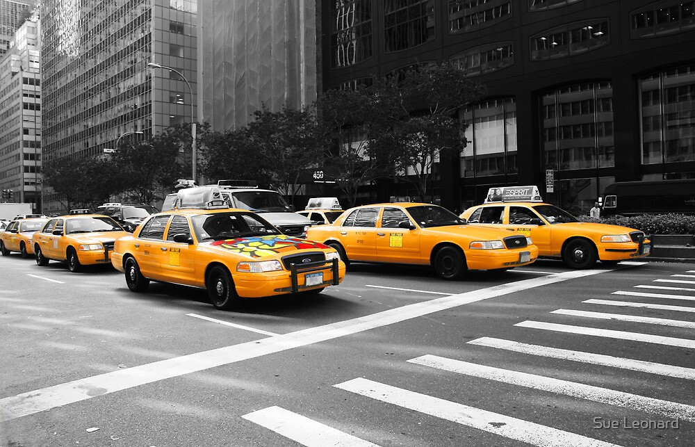 New York Yellow Cabs by Sue Leonard