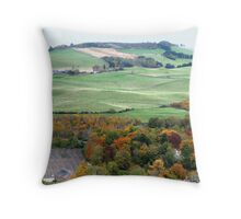 The Valley Beyond Throw Pillow