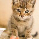 mmmm love eating frankfurters by Ian Middleton