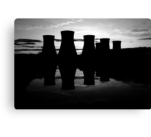 Cooling Reflections Canvas Print