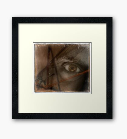 insect eye Framed Print