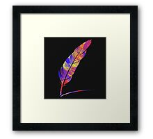 paint feather Framed Print