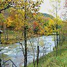Autumn By The River by Deborah  Benoit
