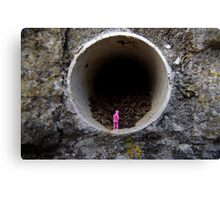 Petrified in Pink Canvas Print