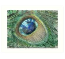 Peacock Feather Eye Art Print