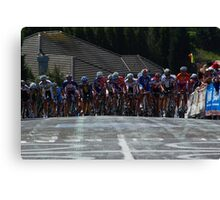 The Peleton Canvas Print