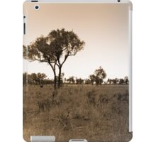 Lonely Landscape iPad Case/Skin