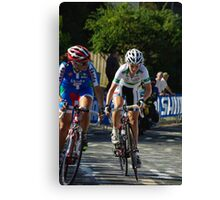 Tiffany Cromwell Canvas Print