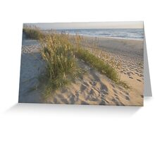 Sea Oats Sunrise Greeting Card
