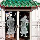 Ninja doors by phil decocco