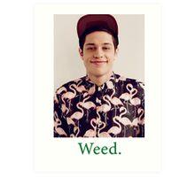 Pete Davidson-- Weed Art Print