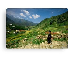 Sapa Countryside Canvas Print