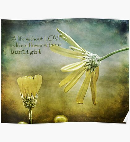 A life without love, is like a flower without sunlight Poster