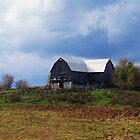 A Barn In Trent Hills by nikspix