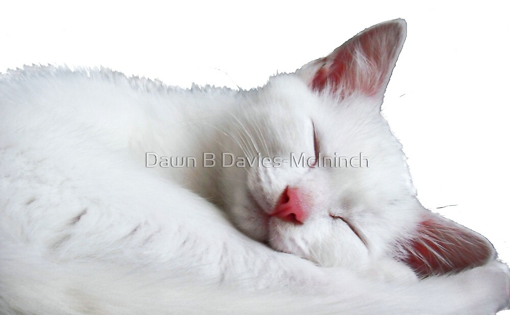 Sooooooooooooo Sleepy by Dawn B Davies-McIninch